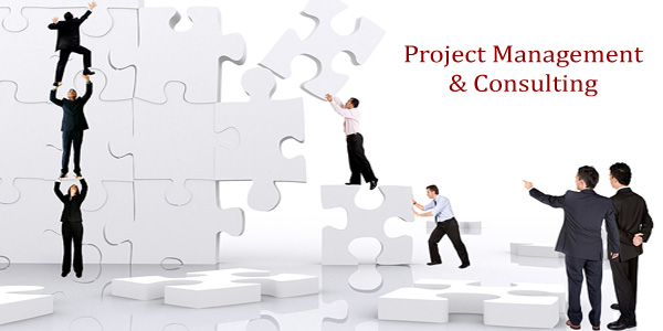 Image result for project management consulting firm